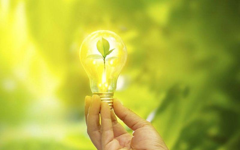 O que é um negócio sustentável?